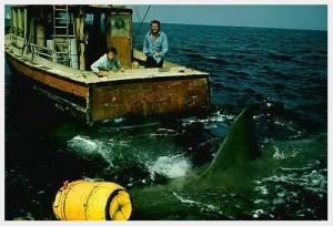"""""""We need a BIGGER boat!"""""""